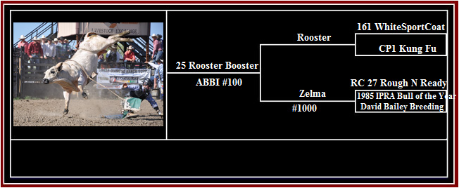 rooster-booster-pedigree